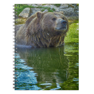 Oso de Brown en agua Spiral Notebook