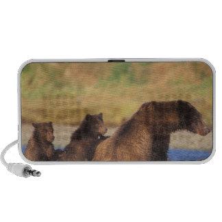 Oso de Brown, oso grizzly, cerda con los cachorros Mp3 Altavoz