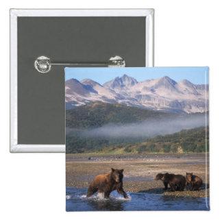 Oso de Brown, oso grizzly, pesca de la cerda con l Pin Cuadrada 5 Cm