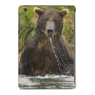 Oso de Brown, varón, pescando para los salmones Fundas De iPad Mini