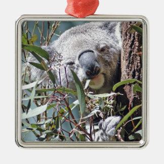 Oso de koala adorno navideño cuadrado de metal