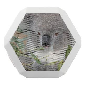 Oso de koala altavoces bluetooth blancos boombot REX
