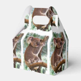 Oso de koala caja para regalos