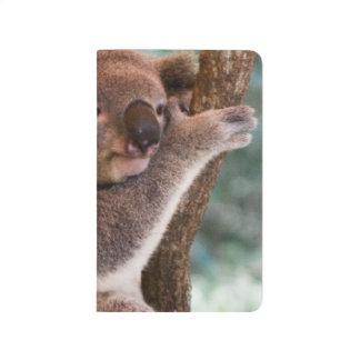 Oso de koala cuadernos grapados