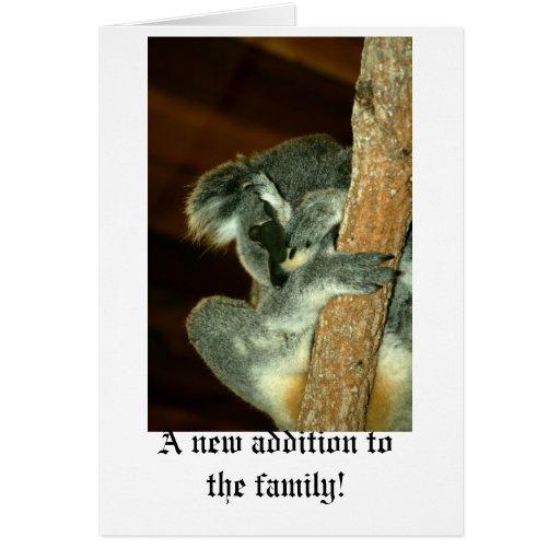 Oso de koala, durmiendo con la pata sobre cara tarjeta de felicitación