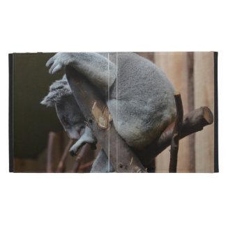 Oso de koala el dormir