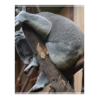 Oso de koala el dormir membrete personalizado