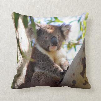 Oso de koala en almohada de tiro animal decorativa cojín decorativo
