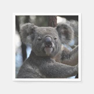 Oso de koala en árbol servilleta de papel