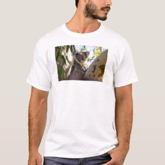 Oso de koala en una camiseta del árbol