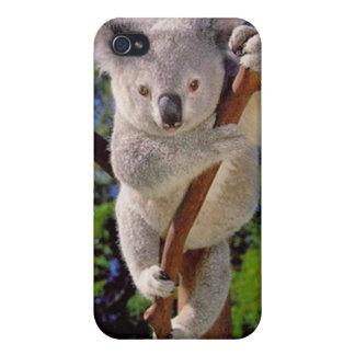 Oso de koala iPhone 4 carcasa