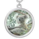 Oso de koala grimpolas