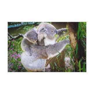 Oso de koala lindo del bebé con la mamá en un árbo impresiones en lona