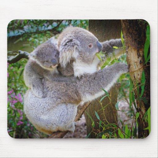 Oso de koala lindo del bebé con la mamá en un árbo tapetes de raton