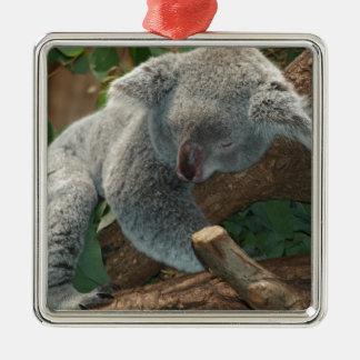 Oso de koala lindo el dormir adorno de reyes
