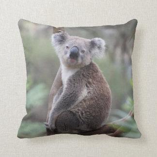 Oso de koala lindo en una almohada de tiro animal cojín decorativo