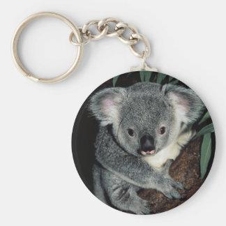 Oso de koala lindo llavero redondo tipo pin