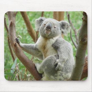 Oso de koala lindo tapete de ratones
