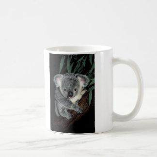 Oso de koala lindo taza básica blanca
