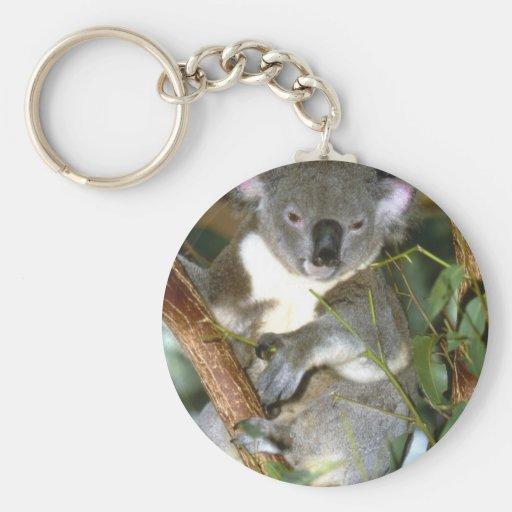 Oso de koala llavero redondo tipo pin