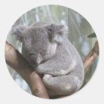 oso de koala pegatina redonda