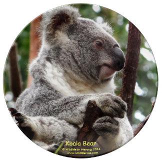 Oso de koala platos de cerámica