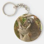 Oso de koala que duerme en un árbol llavero personalizado