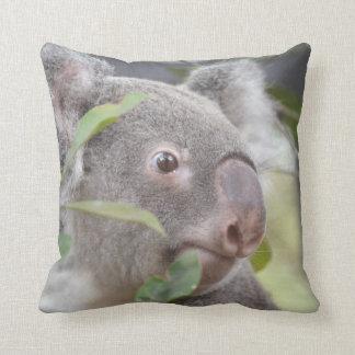 oso de koala que mira c derecha cojín decorativo