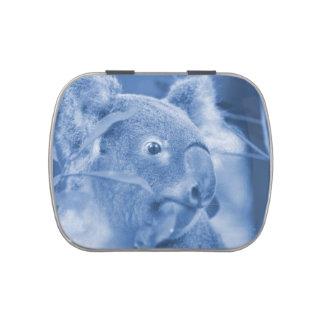 oso de koala que mira el marsupial azul derecho latas de dulces