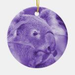 oso de koala que mira el marsupial púrpura derecho adornos