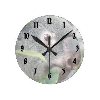 oso de koala que mira el ojo ascendente c.jpg del  reloj redondo mediano