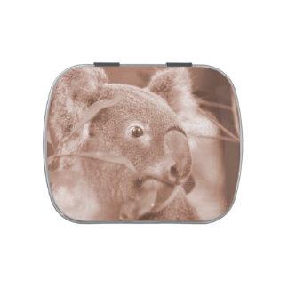 oso de koala que mira sepia.jpg derecho latas de caramelos