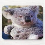 Oso de koala que sostiene un oso de koala tapetes de raton