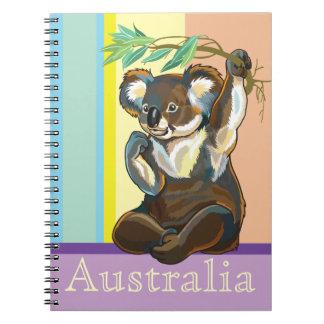 oso de koala spiral notebook