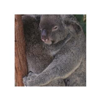 Oso de koala impresión en madera