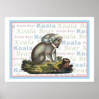 Oso de koala y poster del bebé póster