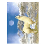 Oso de la nieve tarjetas postales