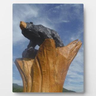 Oso de madera del negro/de Brown con el cielo azul Placas Con Foto