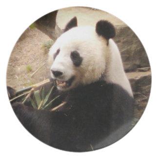 Oso de Pand que come la placa de bambú Plato Para Fiesta