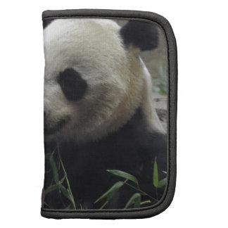Oso de panda chino gigante planificador