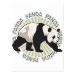 Oso de panda clásico postal