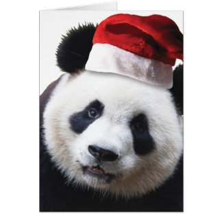 Oso de panda del navidad tarjeta de felicitación