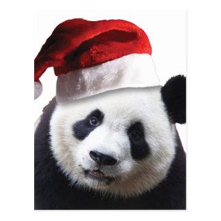 Oso de panda del navidad tarjetas postales