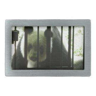 Oso de panda detrás de barras hebilla de cinturon rectangular