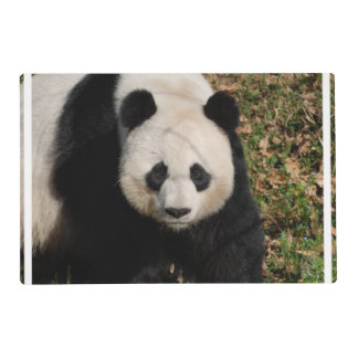 Oso de panda enojadizo salvamanteles