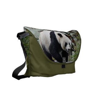 Oso de panda gigante hermoso fotográfico bolsas de mensajería