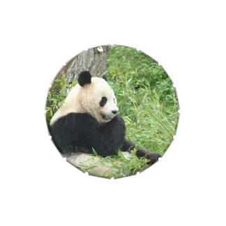 Oso de panda gigante jarrones de caramelos