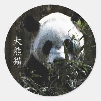 Oso de panda gigante lindo con las hojas de bambú pegatina redonda