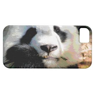 Oso de panda gigante lindo que mastica el bambú iPhone 5 coberturas