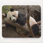 Oso de panda gigante y panda Mousepad del bebé Tapete De Ratones